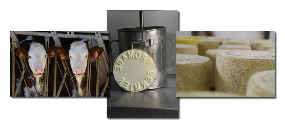 fromage-cantal-fermier-ma-petite-france